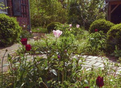 4. Biogarten