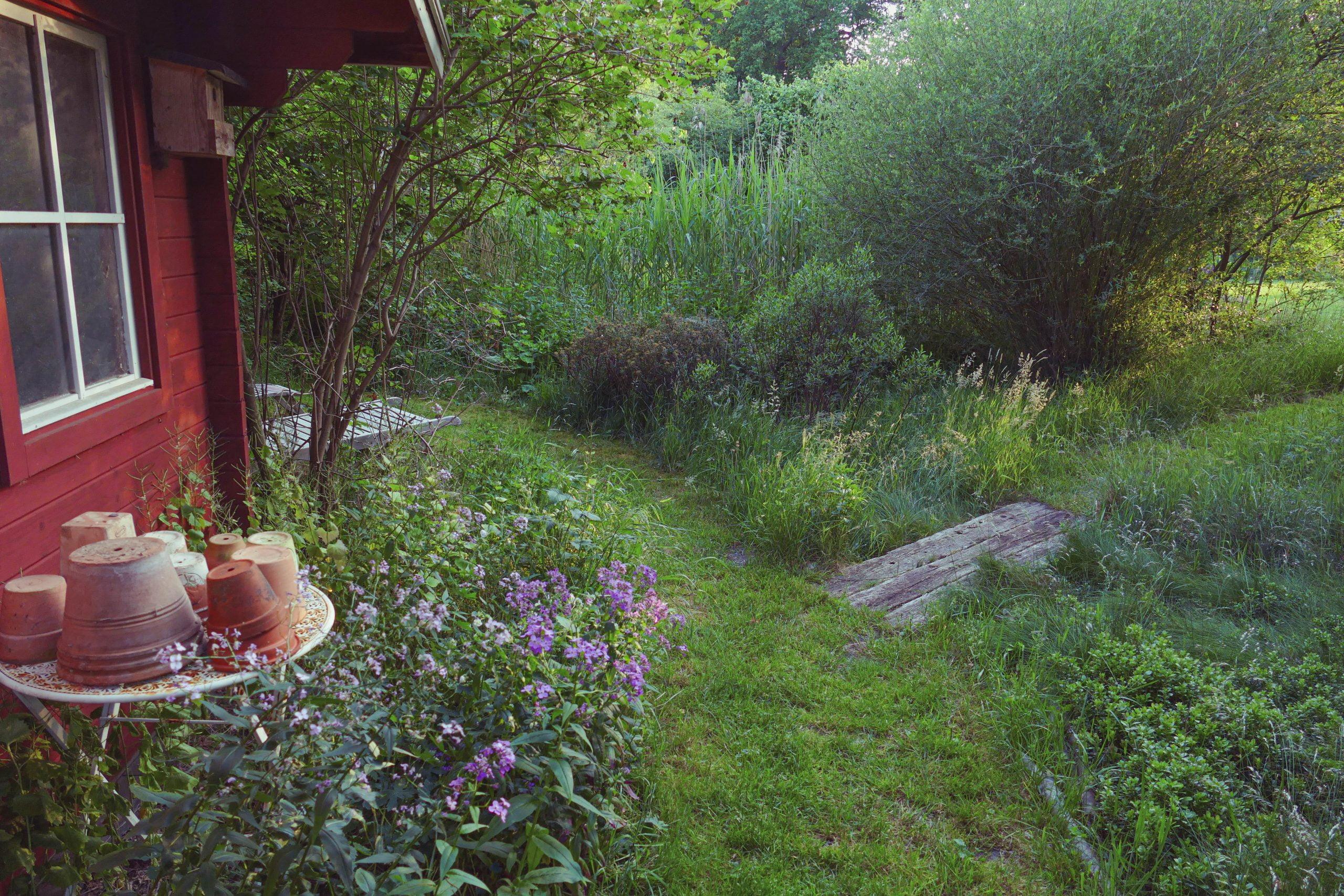 Voll-Naturgarten