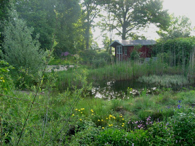 Naturgarten typen