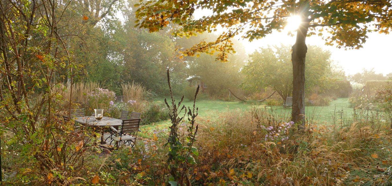 Herbst im Naturgarten - Gelbe Blätter