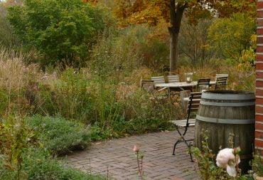 Herbst im Naturgarten: Die Jahreszeiten erleben